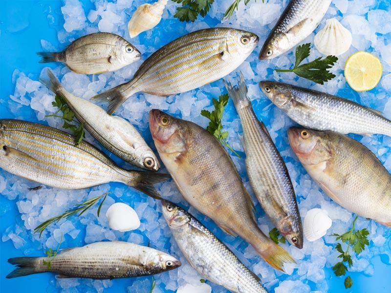 detectar pescado fresco